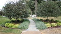 Bluestone walk and plantings in St Louis Park